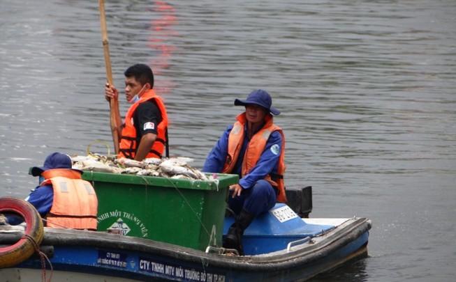 """Kênh Thị Nghè """"đứt đoạn"""", ngăn cá chết thế nào?"""