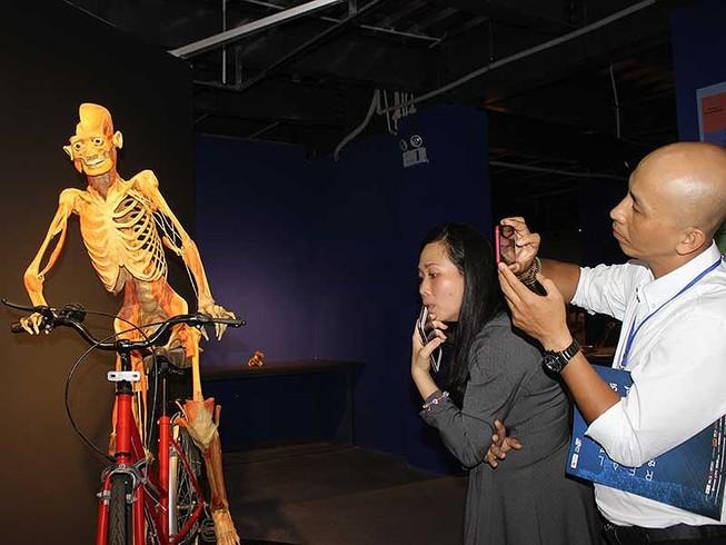 Yêu cầu báo cáo về triển lãm cơ thể người trước 10-7