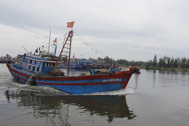 Quảng Ngãi cấm tàu thuyền ra khơi trước bão số 10