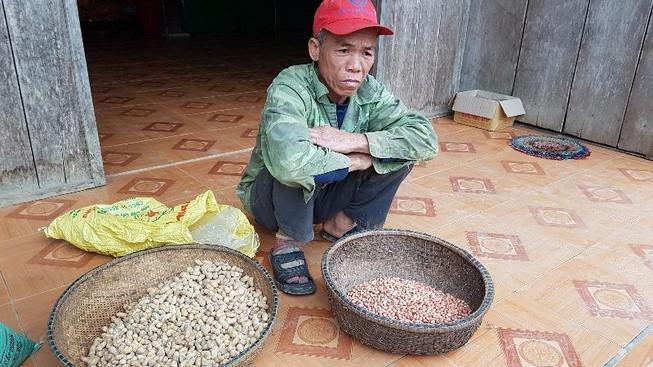 Bí thư huyện yêu cầu kiểm tra đậu giống gieo 10 chết 7