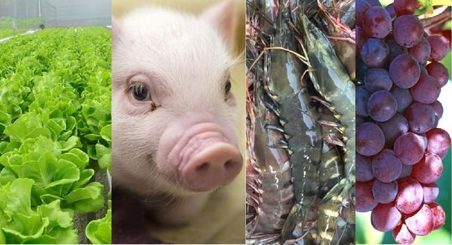 Cây trồng, vật nuôi được Nhà nước hỗ trợ bảo hiểm