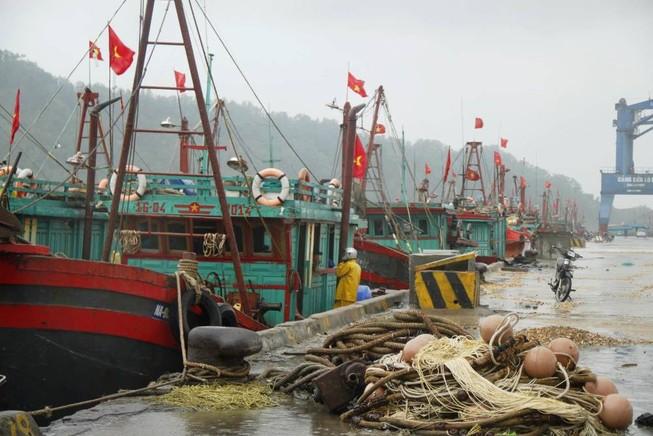 Bão số 10: Hà Tĩnh đang sơ tán hơn 47.000 dân