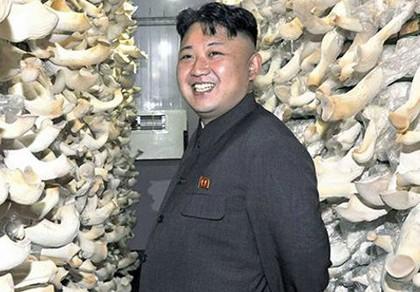 Kim Jong-un muốn Triều Tiên là cường quốc nấm