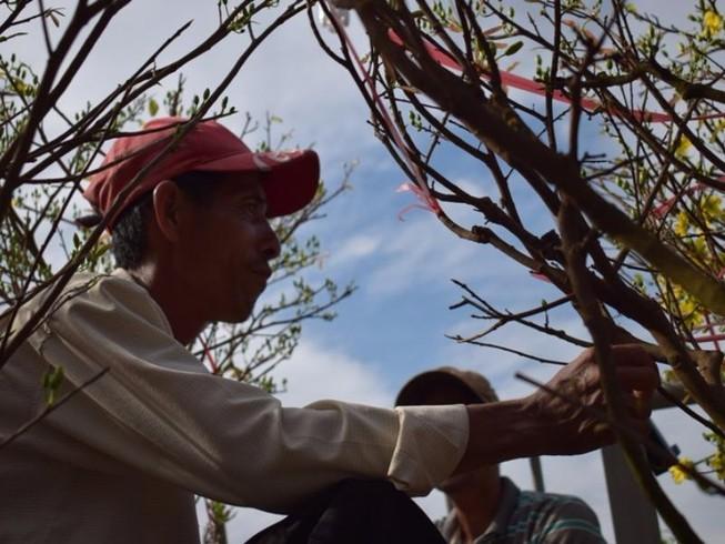 Bến Bình Đông: Hoa tươi, người héo