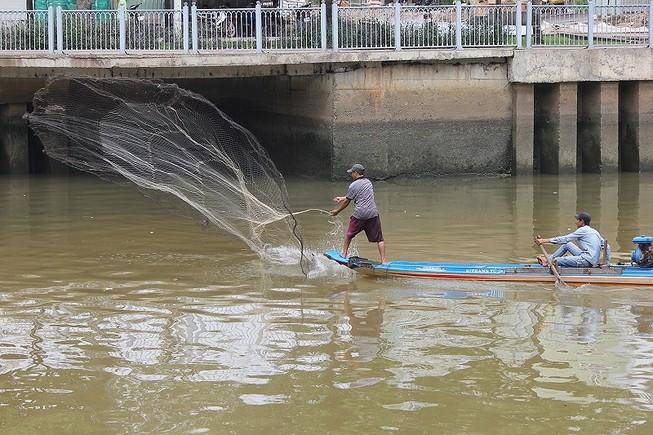 Ông Đoàn Ngọc Hải đề nghị xử lý người bắt cá kênh Nhiêu Lộc