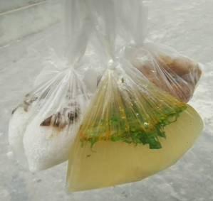 Túi nilong sử dụng để đựng canh nóng, phở.