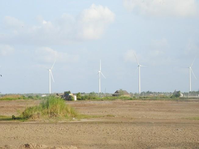 Dừng phiên xử 2 công ty làm dự án điện gió Bạc Liêu