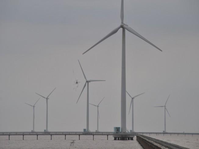 Ông chủ điện gió Bạc Liêu thắng kiện 5 tỉ đồng