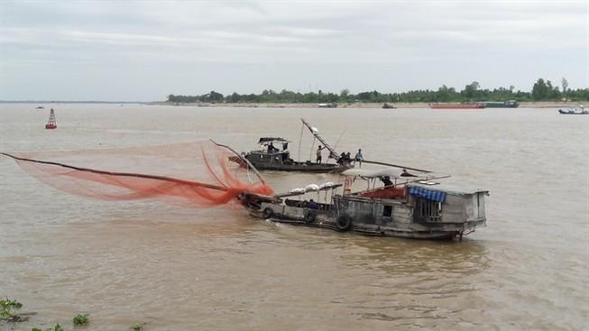 Thiếu bến đậu, hàng trăm tàu thuyền lênh đênh giữa sông Tiền