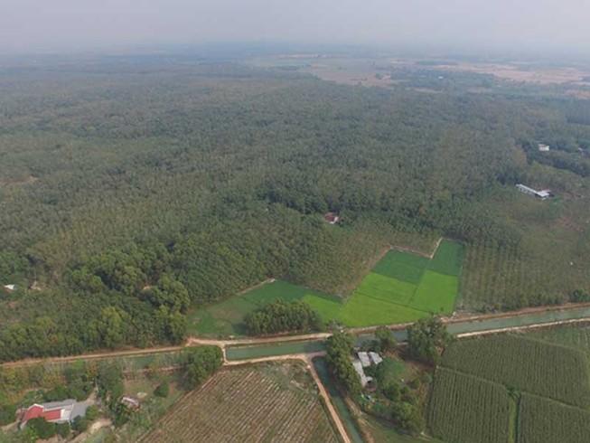 Sagri có vi phạm gì đối với 1.900 ha đất?