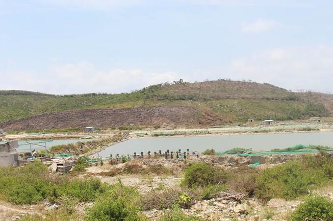 Chính thức tạm dừng giải quyết thủ tục đất đai ở Vạn Ninh