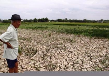 Tài nguyên đất bị khai thác kiệt quệ, tài nguyên nước thì lại lãng phí