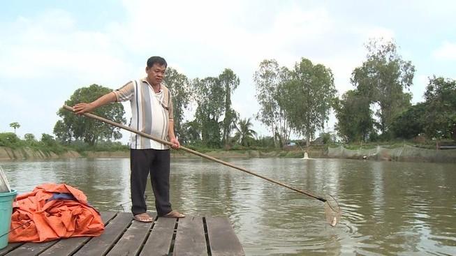 nông dân tham gia chuỗi liên kết cá tra của công ty THuận An hiện đang khốn đốn vì chủ DN biệt tích