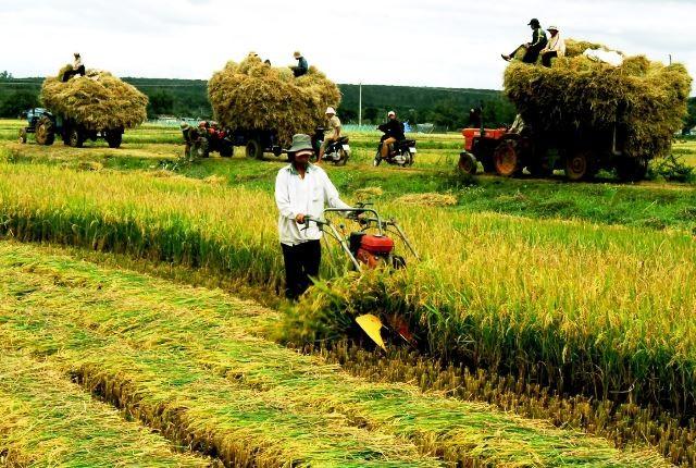 Đại sứ Mỹ: TPP mở ra thị trường lớn cho nông dân Việt Nam