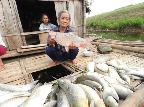 Cá chết trên sông Bưởi vì ô nhiễm môi trường quá nặng