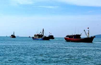 Thành lập ban chỉ đạo ổn định đời sống người dân sau sự cố cá chết