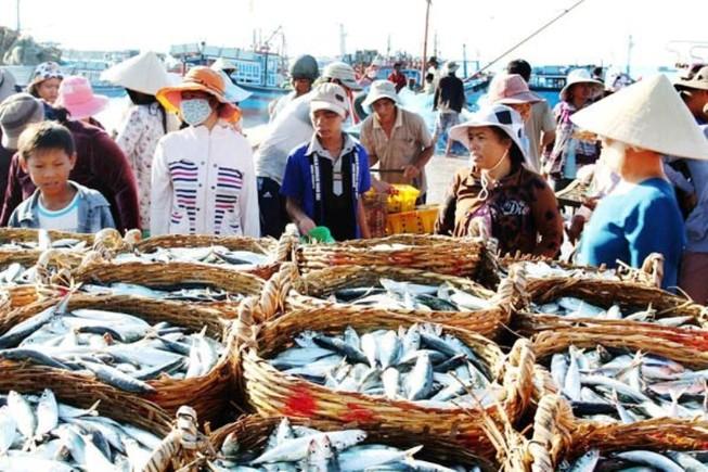 Cần xây dựng bản đồ đánh bắt cá ở 4 tỉnh miền Trung