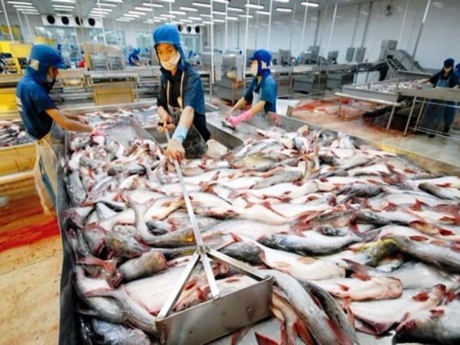 Thủy sản có kháng sinh tăng, thịt chứa chất cấm giảm