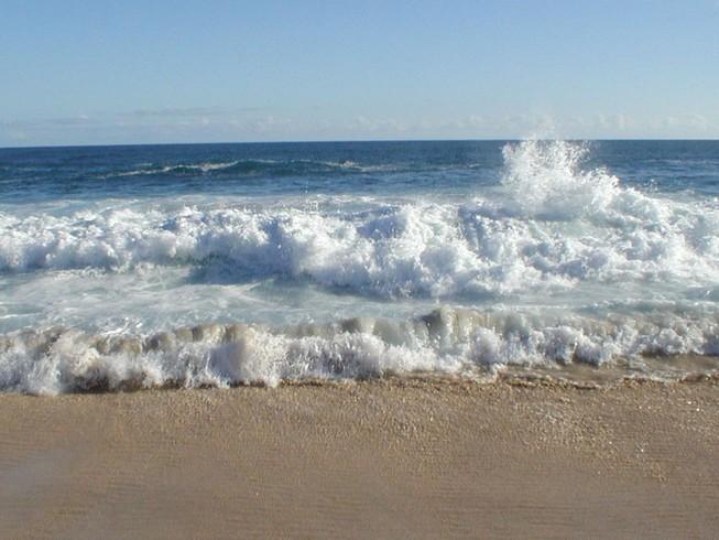 Lấy mẫu ADN thi thể trôi dạt vào bờ biển để tìm danh tính, người thân