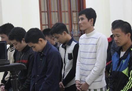 Đối tượng cầm đầu băng nhóm trộm trâu bò lãnh 13 năm tù