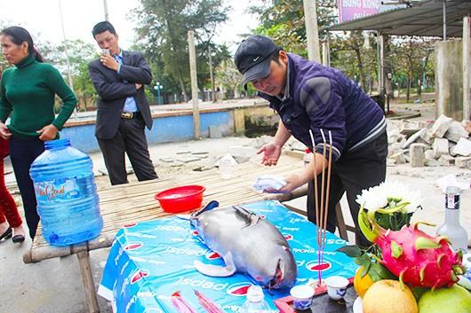 Xác cá ông dạt vào bờ biển được người dân làm lễ an táng