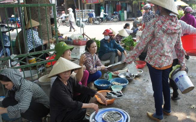 Hà Tĩnh trực 24/24 giờ cấp giấy chứng nhận hải sản an toàn cho ngư dân