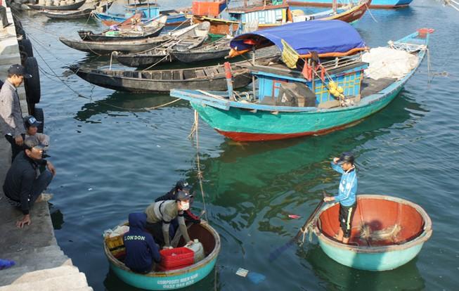 Khai trương 25 điểm bán hải sản đảm bảo an toàn ở Hà Tĩnh