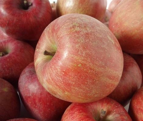 Rau cải và táo Trung Quốc nhập về Nghệ An dương tính với thuốc bảo quản