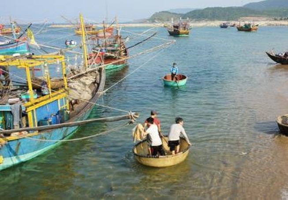 Sau công bố nguyên nhân cá chết cần có các giải pháp an dân