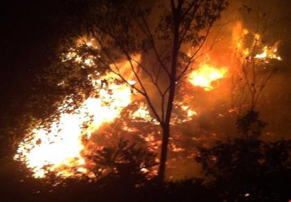 Hằng trăm người trắng đêm dập lửa cháy rừng