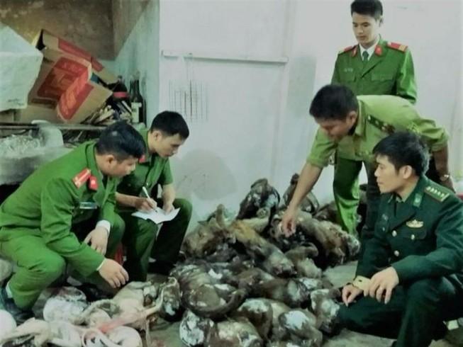 Làm thịt hơn 45 con khỉ và chồn để... bán tết