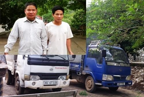 Hai anh em ruột rủ nhau dùng ô tô đi trộm trâu, bò