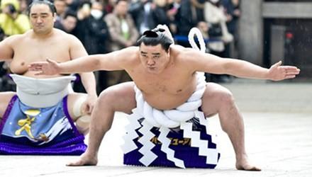 Cuộc 'hành xác' suốt đời của giới võ sĩ sumo