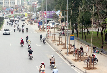 Hà Nội: Họp báo trồng cây xanh mới trên phố Nguyễn Chí Thanh