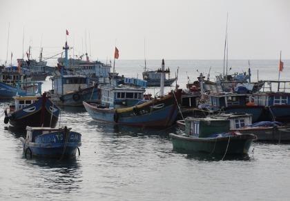 Xử lý nghiêm tàu đánh bắt hải sản bị nước ngoài bắt giữ