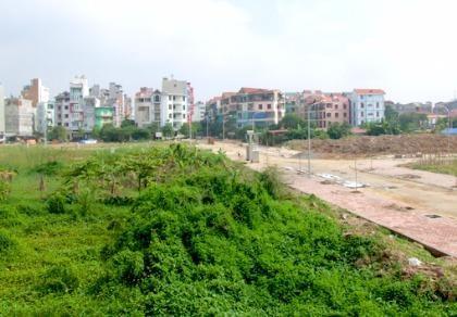 Mới: Miễn, giảm tiền sử dụng đất trong trường hợp đấu giá