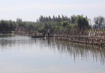 Quảng Ngãi xây đê 170 tỉ đồng ngăn mặn sông Trà Bồng