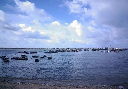 Tìm kiếm CASA 212: Huyện đảo Bạch Long Vĩ huy động tổng lực