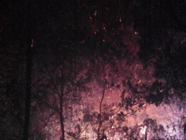 Cháy rừng trên núi kéo dài hơn 13 giờ