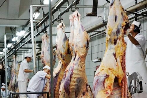 Bò viên Vissan 100% từ thịt bò Úc