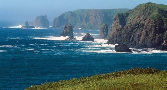 Nga 'rối trí' trước phản ứng của Nhật về quần đảo Kuril