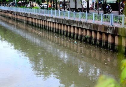 Cá tiếp tục ngoi ngóp trên kênh Nhiêu Lộc