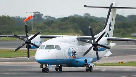 Máy bay hạ cánh khẩn cấp vì con ong kẹt trong động cơ