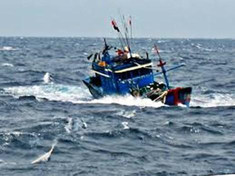 Tàu cá cứu 11 ngư dân bị trôi dạt trong tình trạng kiệt sức