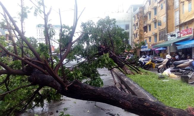 Một phụ nữ mất tích do ảnh hưởng áp thấp nhiệt đới
