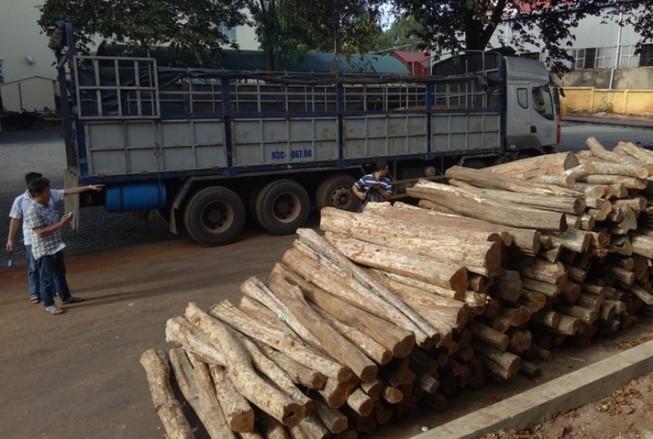 Bắt xe tải chở gỗ lậu từ Gia Lai về TP.HCM tiêu thụ