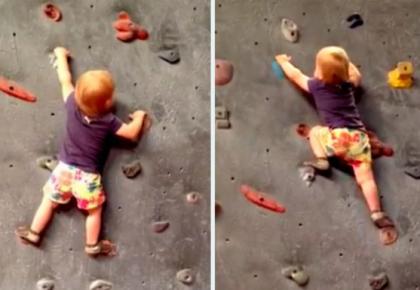Bé 19 tháng tuổi leo núi nhân tạo như nhà chuyên nghiệp
