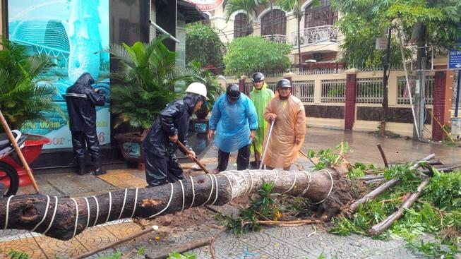 Bão số 3 áp sát, cây gãy đổ la liệt trên đường phố Đà Nẵng