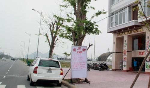 Đà Nẵng: Đề xuất tổng rà soát lao động người Trung Quốc