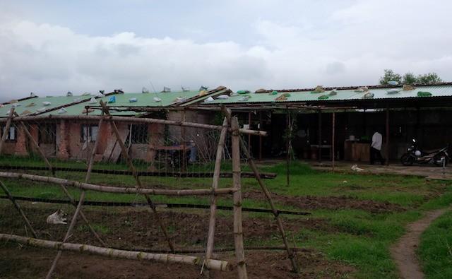 Đà Nẵng: Xây dựng 300 ha rau sạch để tránh rau nhiễm độc